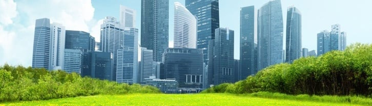 spring park and modern city 2.jpg